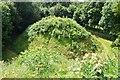 TL5844 : Bartlow Romano-British Tumuli by Ashley Dace