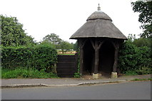 TL1344 : Thatched shelter for the old village pump by Philip Jeffrey