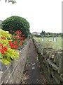 SE1127 : Footpath - Westercroft Lane by Betty Longbottom