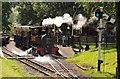 TL0017 : The Whipsnade Zoo Railway by Steve Daniels