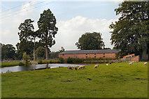 SJ9921 : Shugborough Park Farm by David Dixon