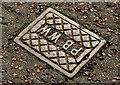 "C9242 : ""PBWW"" access cover, Portballintrae by Albert Bridge"