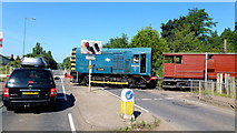 SO6302 : 'Charlie' crossing the A48 by Jonathan Billinger