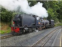 SH4862 : Welsh Highland Railway locomotive number 87 by Richard Hoare