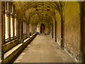 ST9168 : Cloister Walk, Lacock Abbey by David Dixon