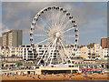 TQ3103 : The Brighton Wheel by David Dixon