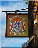 SO8171 : The Three Lions - pub sign, 11-12 Foundry Street, Stourport-on-Severn by P L Chadwick