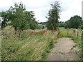 SP8898 : Concrete farm track, north of Seaton Road by Christine Johnstone