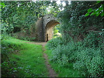 SS7701 : Bridge over footpath at Coleford by David Redwood