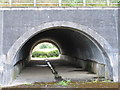 SU8586 : Flood tunnel by Gossmore Park by David Hawgood
