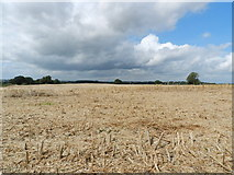 SK2441 : A harvested field by Peter Barr
