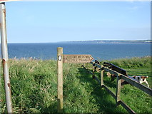 TA1281 : The Yorkshire Wolds Way from Filey country park by Tracey Anne Taylor