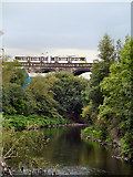 SD7807 : River Irwell, Radcliffe Viaduct by David Dixon