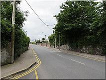 W6572 : Blarney Street, Cork by David Hawgood