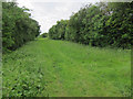TL2652 : Former railway line by Hugh Venables