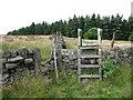 SE0025 : Ladder stile on Hebden Royd Footpath 71 by Humphrey Bolton