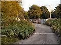 SD8003 : Clifton Road by David Dixon