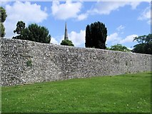 SU8504 : Chichester City Wall by Paul Gillett