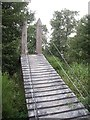 NO5697 : Ramp to footbridge by Stanley Howe