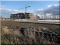 TL4258 : West Cambridge development by Hugh Venables