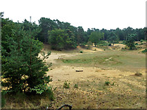 TQ1461 : Old sandpit, Oxshott Heath by Robin Webster