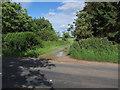 TL2555 : Wet bridleway by Hugh Venables