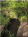 SX8462 : Gatcombe Brook by Derek Harper