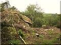 SX7478 : Uncovered tor near Greator Rocks by Derek Harper