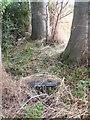 SP3770 : The Cemetery of St John the Baptist Church Wappenbury (3) by Nigel Mykura