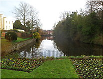 SO5139 : Castle Pool, Hereford by Jaggery