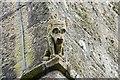 SW5435 : Dog-like grotesque by Elizabeth Scott