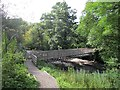 NS7883 : Bridge, Carron Glen by Richard Webb