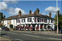 TQ1667 : The City Arms by Robin Webster