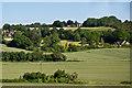 TQ5162 : Towards Cockerhurst Road by Ian Capper