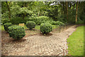 SK6464 : Animal graves by Richard Croft