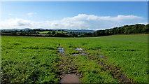 SO8534 : Open grassland by Jonathan Billinger