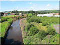 SD8110 : River Roch, looking north by Stephen Craven