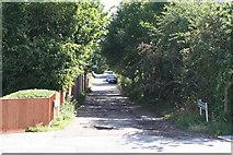TQ3770 : Green Chain Walk:  Stumps Hill Lane by Dr Neil Clifton