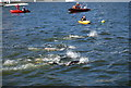TQ4080 : Swimmers, Royal Victoria Dock by N Chadwick