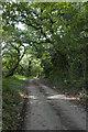 SW5633 : Countess Bridge Lane by Elizabeth Scott