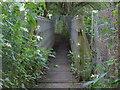 TQ0362 : River Bourne footbridge by Alan Hunt