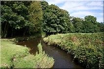 SH3793 : Afon Wygyr, Cemaes by Paul Buckingham