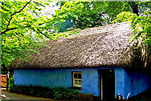 R4560 : Bunratty Folk Park - Site #3 - Cashen Fisherman's House by Suzanne Mischyshyn