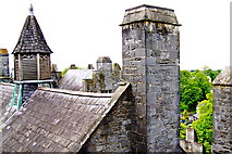 R4560 : Bunratty Castle -NE Tower View - Roof over The Great Hall  by Suzanne Mischyshyn