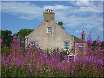 NT6578 : East Lothian Architecture : West Barns House (West Elevation) by Richard West