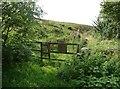 SE0223 : Footpath off Wine Tavern Lane, Sowerby by Humphrey Bolton