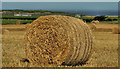 C8538 : Straw bales near Portrush (1) by Albert Bridge