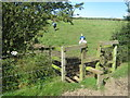 NZ3541 : Stile for footpath north of Ludworth by peter robinson