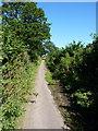 SJ9403 : Old Hampton Road - just a path by Richard Law