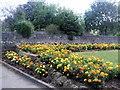 SZ6192 : Flowers in Puckpool Park by Paul Gillett
